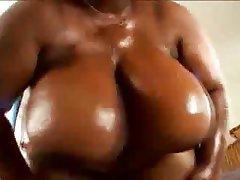 BBW, Big Boobs, Big Butts, Big Tits